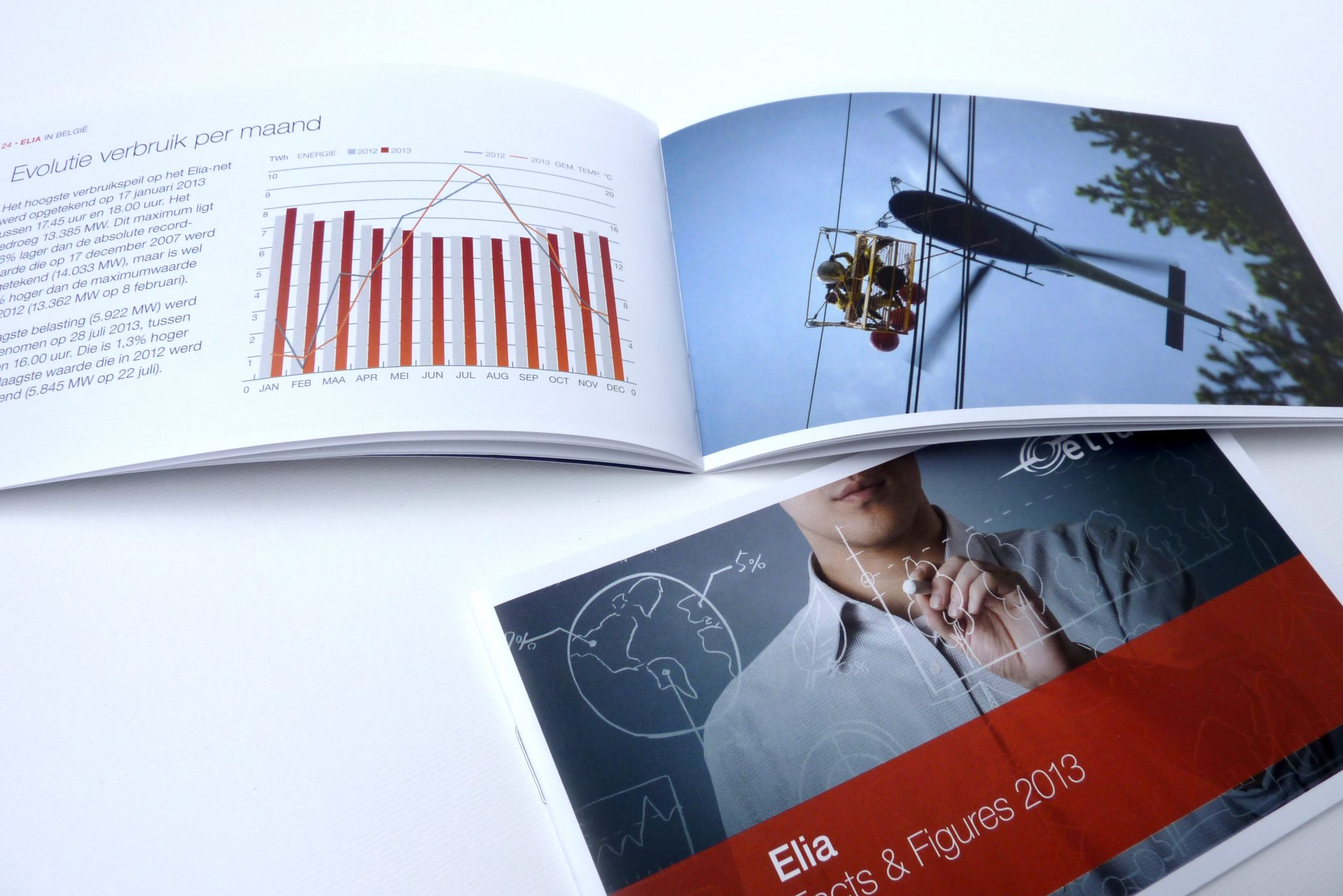 studio witvrouwen layout data design design graphic color visual identity elia